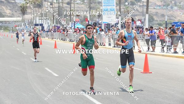 fotoaccionpe-proximacarrera-maxsouffriaucom-necatpace-lima-itu-triathlon-world-cup-2019-20191103-1833.jpg