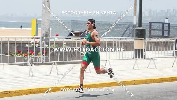 fotoaccionpe-proximacarrera-maxsouffriaucom-necatpace-lima-itu-triathlon-world-cup-2019-20191103-1923.jpg