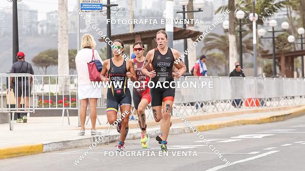 fotoaccionpe-proximacarrera-maxsouffriaucom-necatpace-lima-itu-triathlon-world-cup-2019-20191103-0716.jpg