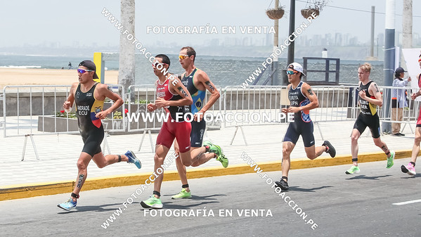 fotoaccionpe-proximacarrera-maxsouffriaucom-necatpace-lima-itu-triathlon-world-cup-2019-20191103-1900.jpg