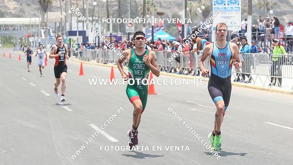 fotoaccionpe-proximacarrera-maxsouffriaucom-necatpace-lima-itu-triathlon-world-cup-2019-20191103-1832.jpg
