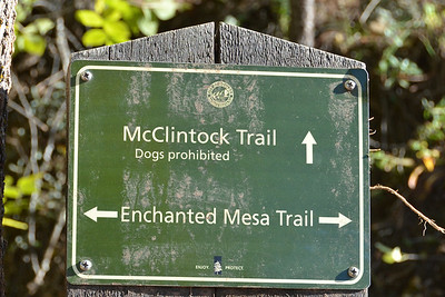 McClintock Trail carried the major flood waters.