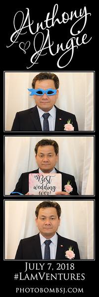 Anthony & Angie's Wedding