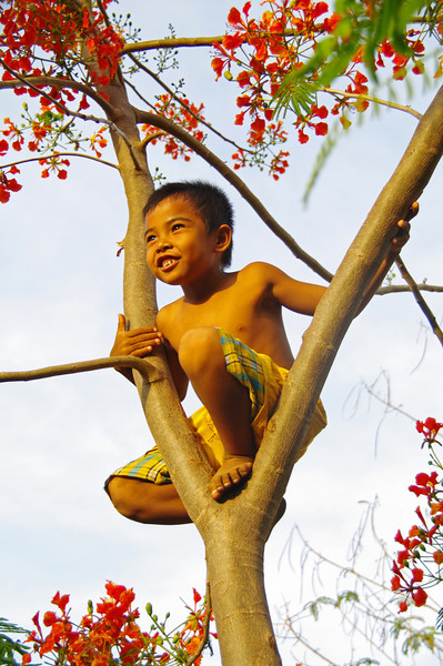 Golden Light Monkey Boy<br /> Gillies Island, Indonesia