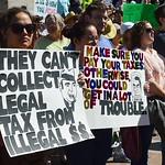 Trump-tax returns (12)