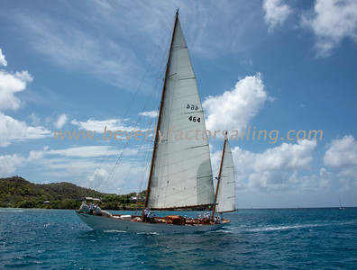 Antogua Classic Yacht Regatta 2018_0769