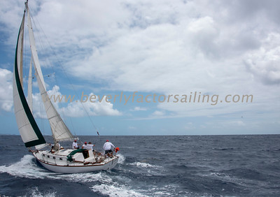 Antigua Classic Yacht Regatta 2018_1342