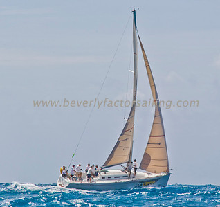 Day 5- Antigua Sale Week 2011_FACTOR_7163
