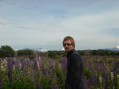 Alex in a field of wild flowers (Lupens), South Island, New Zealand