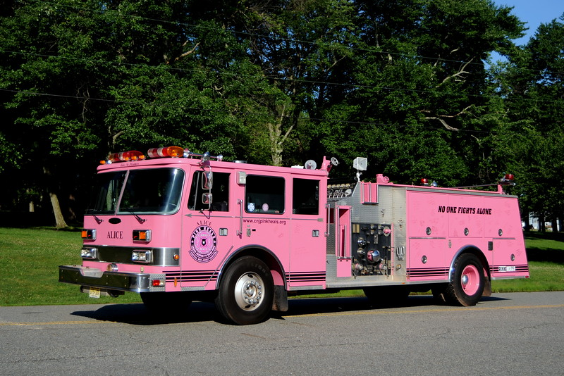 Pink Heals  Central NJ Chapter