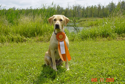 2003 Junior Hunter Title