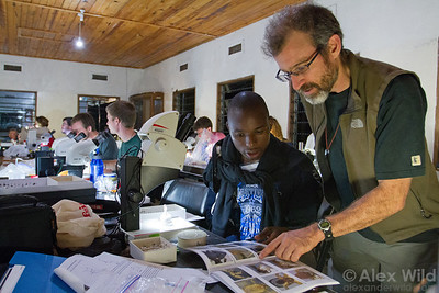Brian Fisher (California Academy of Sciences, USA) with Caswell Munyai (University of Venda, South Africa) at Ant Course 2012 in Uganda.