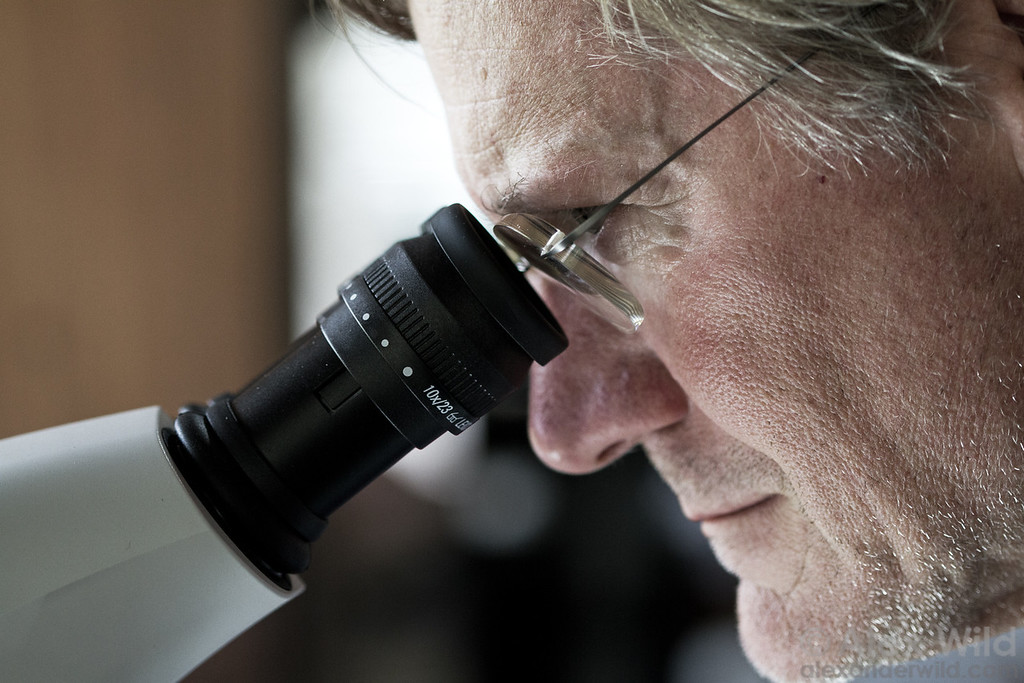 Jack Longino at the microscope at Ant Course 2012 in Uganda.