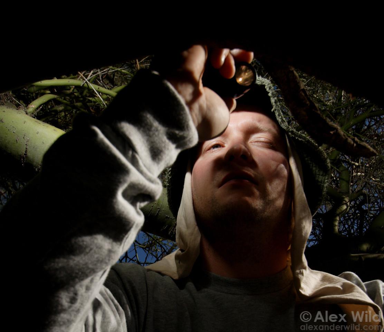 Scott Powell peers into the nest entrance of Cephalotes rohweri turtle ants.