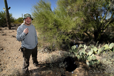 Scott Powell in the Sonoran Desert where he studies Cephalotes rohweri turtle ants.