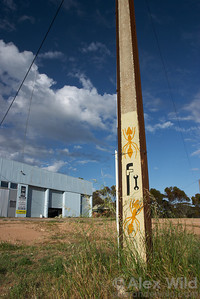 The farm town of Poochera, Australia (population 24) is perhaps the only place in the world with ant-based tourism.  The dinosaur ant Nothomyrmecia macrops was rediscovered here in the 1970s, and the area still attracts myrmecologists.  The town has stenciled ants in various places along the public streets.  Poochera, South Australia