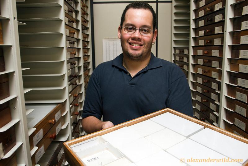 Rodrigo Feitosa, a myrmecologist at São Paulo's Zoology Museum, holds the drawer containing the Martialis heureka holotype specimen.  São Paulo, Brazil