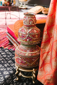 anusha-shamir-engagement-19