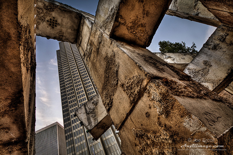 <strong>The Concrete Jungle</strong>