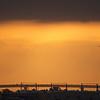 26Oct10-Coronado bridge at sunrise.<br /> SMCP-FA 70-320mm f/4.5-5.6