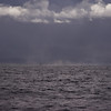 3Jan2011 -They call it stormy Monday (out at sea). January benthics sampling--and a real victory at sea kind of day...<br /> SMCP-DA 55-300mm f/4.5-5.8