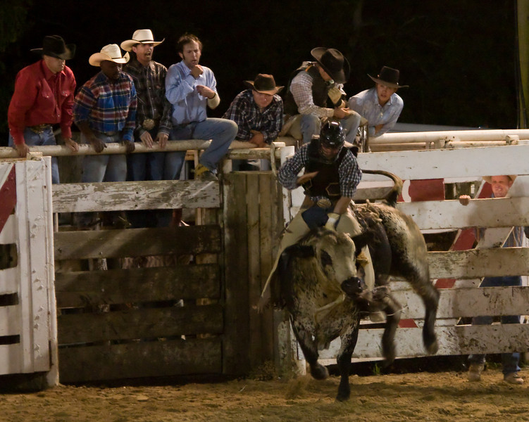 Rodeo-105