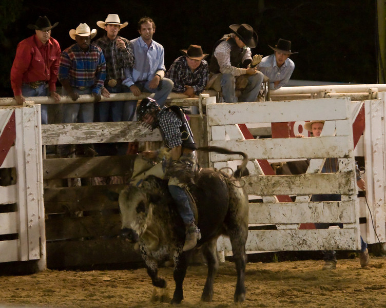 Rodeo-108