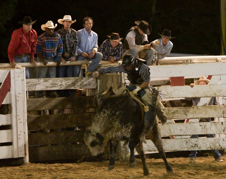 Rodeo-107