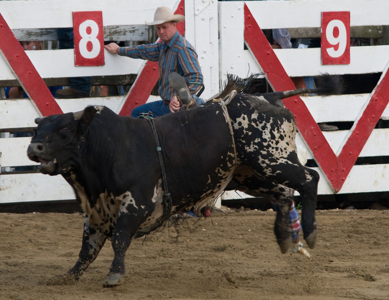 Rodeo-29
