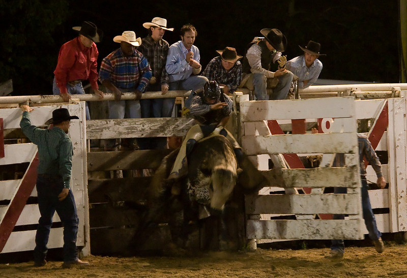 Rodeo-102