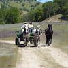 WILDFLOWER WINGDING/MISSION DAY, SAN ANTONIO DE PADUA