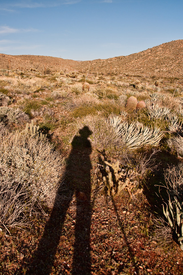 Self portrait in the desert.