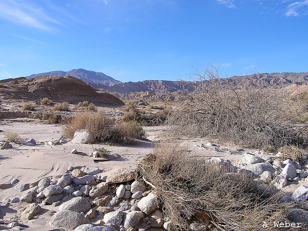 Anza-Borrego Desert State Park, Fish Creek Wash