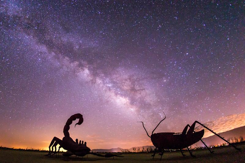 Scorpion vs. Grasshopper under the Milky Way