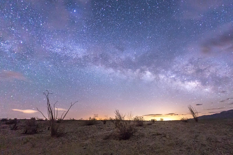 Milky Way over some ocotillo