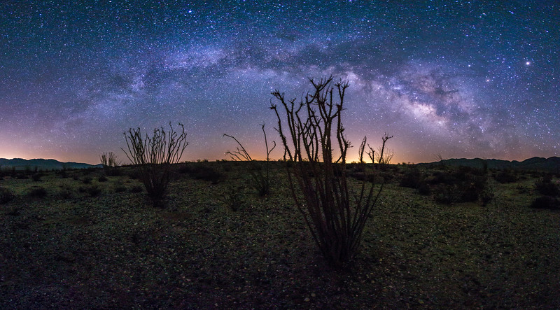 Panorama of the Milky Way over ocotillo