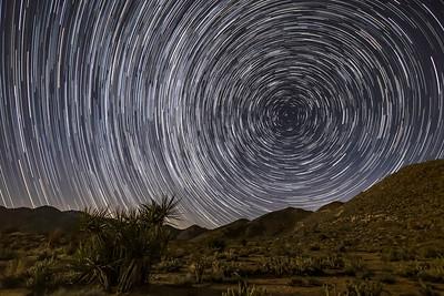 North Star Trails Over Lush Desert Landscape