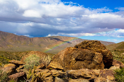 Tiny Little Rainbow In Anza-Borrego