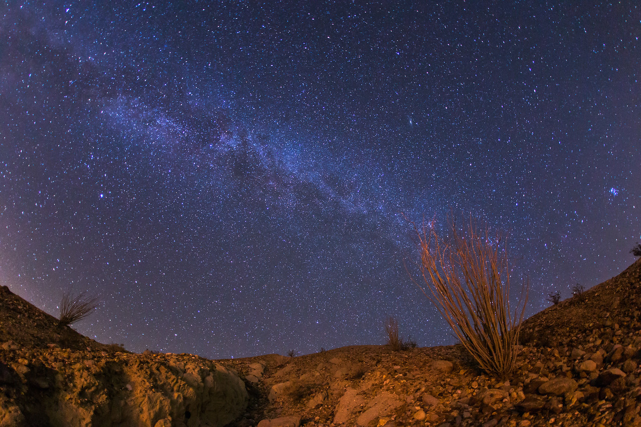 Another night in Anza-Borrego Desert State Park