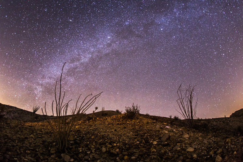 Nighttime in the Anza-Borrego Desert