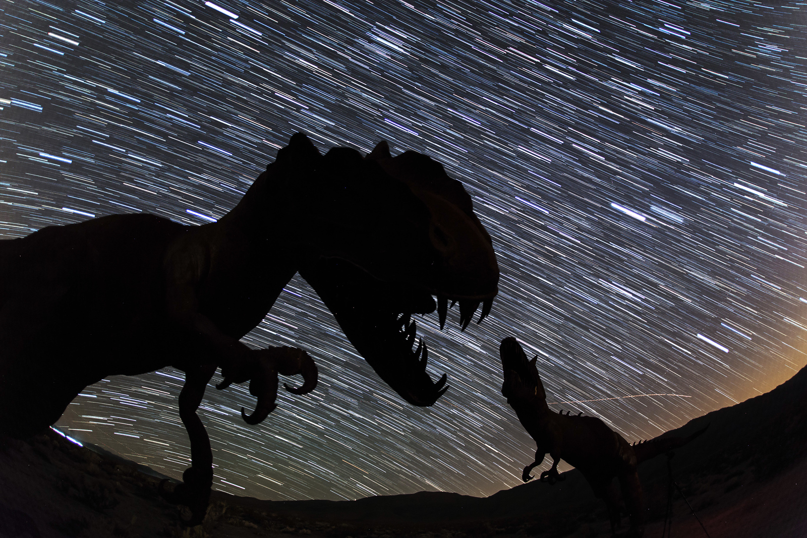 Dinosaur battle and star trails