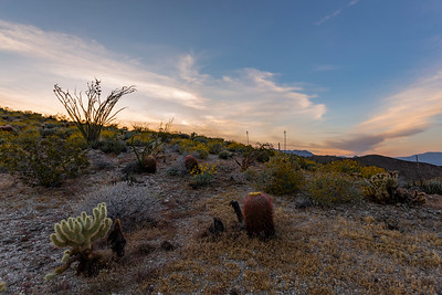 Sunset Near Kenyon Overlook Trail in Anza-Borrego Desert