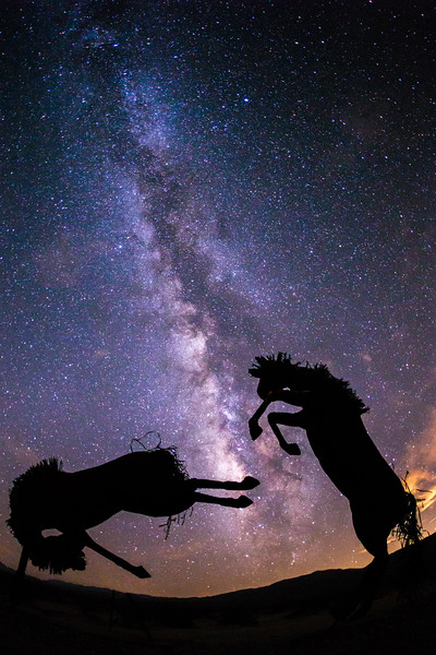 Horse sculptures and the Milky Way