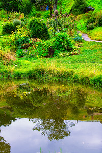 Green with a reflection Hobbiton Movie Set