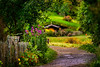 A stroll in The Lane Colours of Hobbiton Movie Set New Zealand
