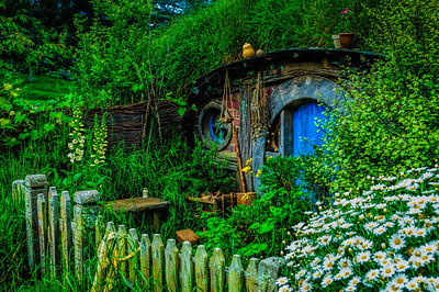 It was the daisies with a blue door Hobbiton Movie Set Matamata New Zealand