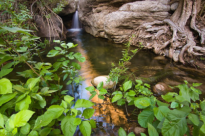 Fish Creek, near the Fish Creek bridge along Apache Trail