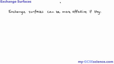 Exchange Surfaces