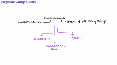 Organic compounds - The Esters