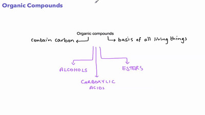 Organic compounds - Carboxylic Acids